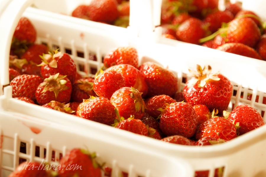 strawberry, strawberries, recipies, health,