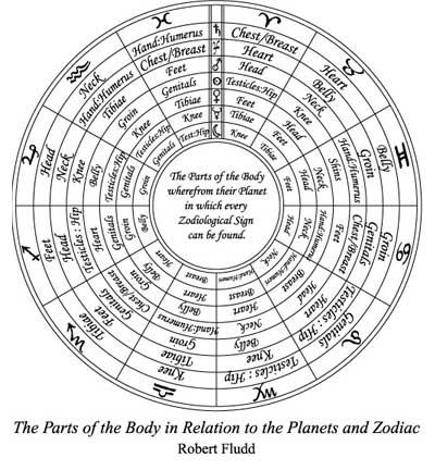 herbs, herb, herbalism, natural, healing, robert fludd, classical herbology