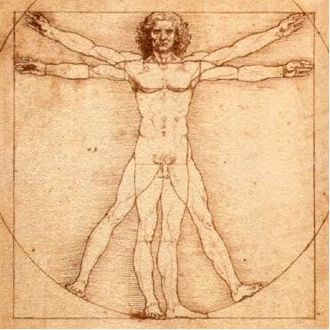 herbs, herbalism, herbology, natural, healing, medical, astrology, tea, teas, herbal, treatment, remedies, remedy