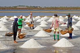 salt, sea salt production