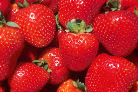 strawberry, strawberries, fragaria